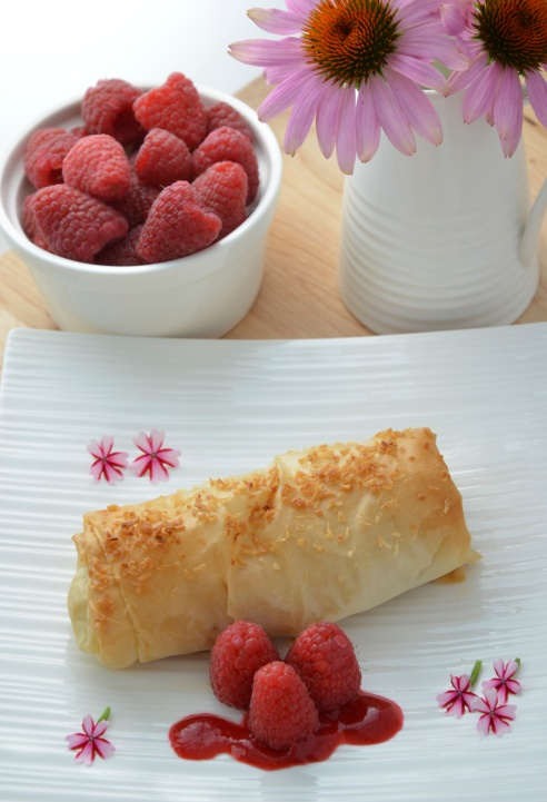 Coconut Rice Pudding Spring Rolls with Raspberry Sauce